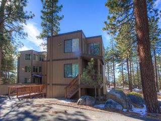 Lake Village Townhouse  with WiFi is Pet Friendly ~ RA843, Zephyr Cove