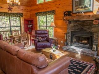 Bear Dancer - Wonderfully secluded with mountain view! Sleeps up to five!, Chatsworth
