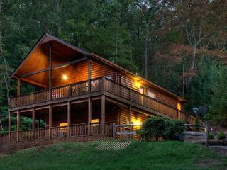 Appalachian Escape-10 Minutes from Downtown Blue Ridge!, Ellijay