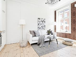Nice apartment in the heart of Oslo