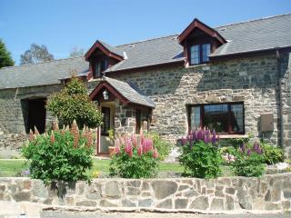 Friendly Cottage (WAS393), New Quay