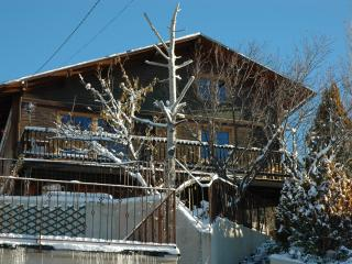 Cosy and sunny chalet in the French Pyrenees ski, Estavar