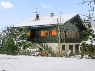 Magnificent chalet with garden, Alex