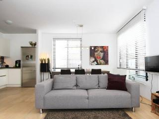 Very Comfortable And Light Apartment With Elevator, Amsterdam