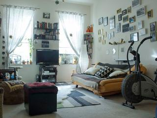Two To Four Months Sublet, Huge Apartment, New York City