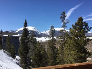 Centrally located to 5 mountain resorts, Dillon