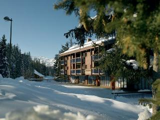8 persons flat on the slopes ARC 1800, Les Arcs