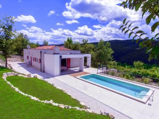 New design villa with pool in middle of nature, Motovun
