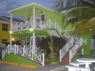 Comfortable 3 Bedroom Apartment Prospect St. James