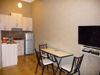 Charming flat(apartment) in Tbilisi center