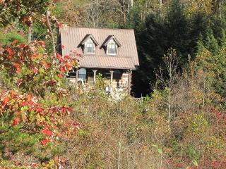 Bluff View Cabin Mins. From Chattanooga