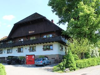 Vacation Apartment in Zell am Harmersbach - 861 sqft, 1 living room / bedroom, max. 5 people (# 8956)