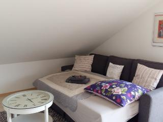 Vacation Apartment in Zell am Harmersbach - 560 sqft, 1 bedroom, up to 4 people (# 9214)
