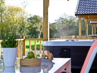 Woodpecker Lodge, Redlake Farm located in Littleton, Somerset, Compton Dundon