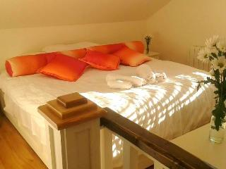 Central duplex apartment with WiFi, Galway