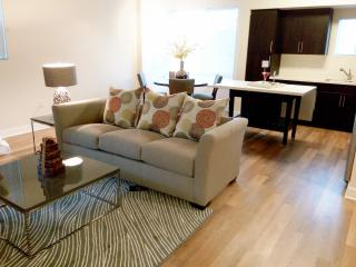 Brand New 2 Bed Apt vacation home central Irvine