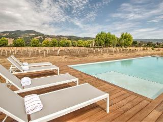 4BR Vineyard House with Pool + Guest House in Kenwood