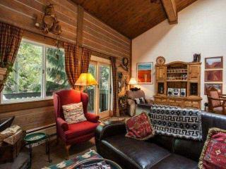 Warm Cozy Mountain Townhome, Steps to Bus Stop, Steps to Gore Creek~ Book a Family Mountain Retreat!, Vail