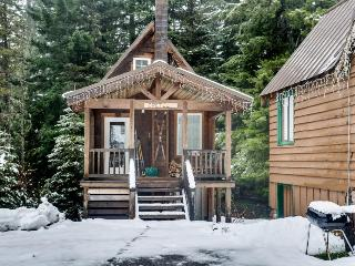 Intimate fairytale cabin w/wood stove, near ski resorts!, Government Camp