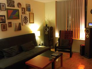 Cozy 2 bedroom APT - artsy Queen West area, Toronto