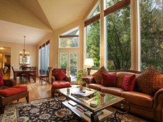 Grand Colonial Style Home! Expansive indoor/outdoor CO living ~ Private HOT TUB, creek & trout pond!, Vail