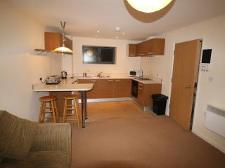 Nice Space close to UHW Heath Hospital or Town, Cardiff