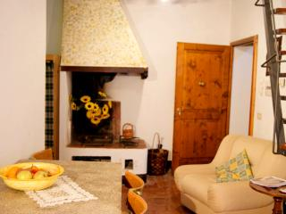 Apartment 4 pax with fireplace, Terricciola