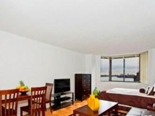 STUNNING AND FURNISHED STUDIO APARTMENT IN NEW YORK, New York City