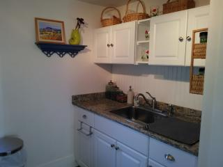Beautiful Downtown Mystic 1 Bd Apartment!