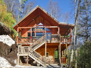 *Secluded Cabin- 5 acres! Game Room-WiFi-Hot Tub!*, Townsend
