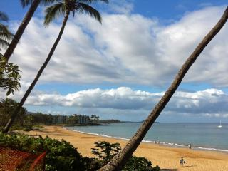 Special Price! Walk to beach Ocean View,Central AC, Kihei