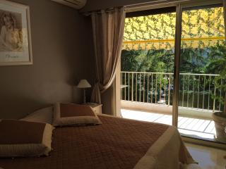 One bedroom apartment in the heart of Cannes