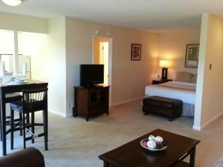 Homey and Well Furnished 2 Bedroom Apartmen - Palo Alto