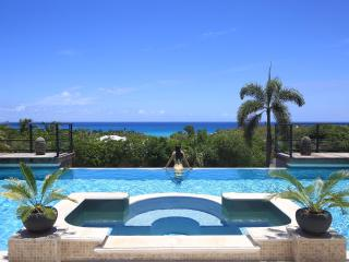 Giselle is a fabulous newly remodelled villa within walking distance of the beautiful Plum Bay beach, Terres Basses