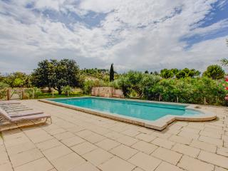Le Mas Angelique, Pet-Friendly Rental with a Fireplace and Pool, Eygalieres