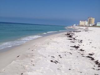 Gulf View, 2BR/2Bath Condo, sleeps up to 8, Pensacola Beach