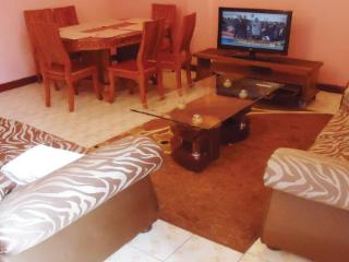 Furnished one bedroom flat in Nairobi with WIFI