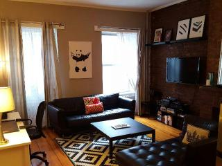 Huge and Modern 1 BR on Amazing Tree Lined Block, New York City