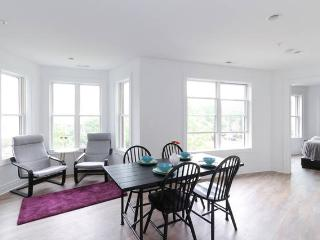 Modern DC 2BR Condo- walk to everything!, Washington DC