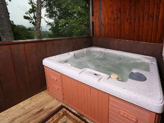 Starry Night a one bedroom cabin that sleeps four. Minutes from GSMNP., Pigeon Forge
