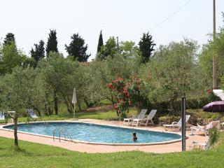 Pnoramic Apartment 4 persons in the Tuscan hills, Certaldo