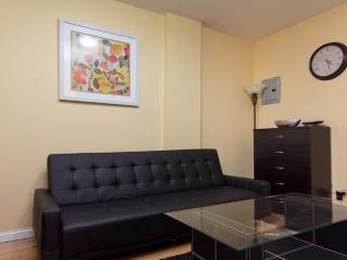 GORGEOUS AND FURNISHED 1 BEDROOM APARTMENT, Long Island City