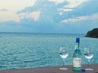 Autumn Special, Oceanfront villa with Chef!!, Ocho Rios