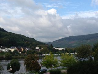 Waterside Mosel Apartment 2- The Heron, Zell