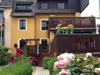 Waterside Mosel Apartment 1 -The Swan, Zell