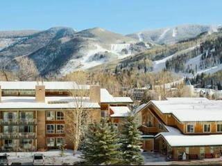 AMAZING MOUNTAIN VIEW DEAL SLEEPS 1-6!, Vail