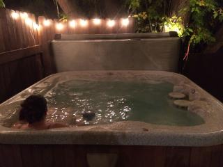 Share Our Red Rock Ski Retreat With Hot Tub, Salt Lake City