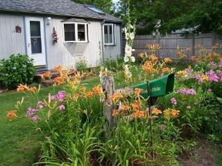 Highly desireable cottage get-a-way, Centerville