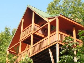 Winter Special-2016: $99/nt.; Great view & cabin, Sevierville