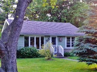 'The Peachtree Cottage' Charming 3BR New Buffalo Cottage w/Large Yard, Private Deck, & Tons of Amenities - Nice Walk or Easy Bike Ride to the Beach & Close to All Area Attractions